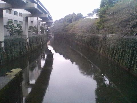 081006edogawabashi_2